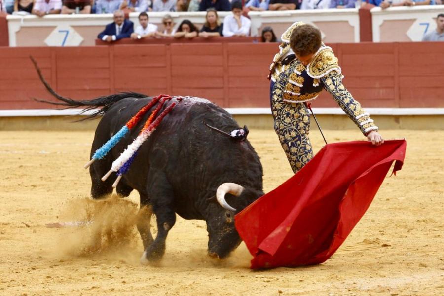 Un sobresaliente Ginés Marín conquista Cuenca de nuevo