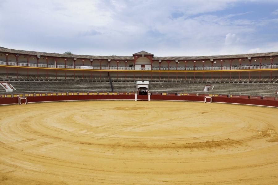 MaxiToro seguir� al frente de la plaza de toros de Ciudad Real