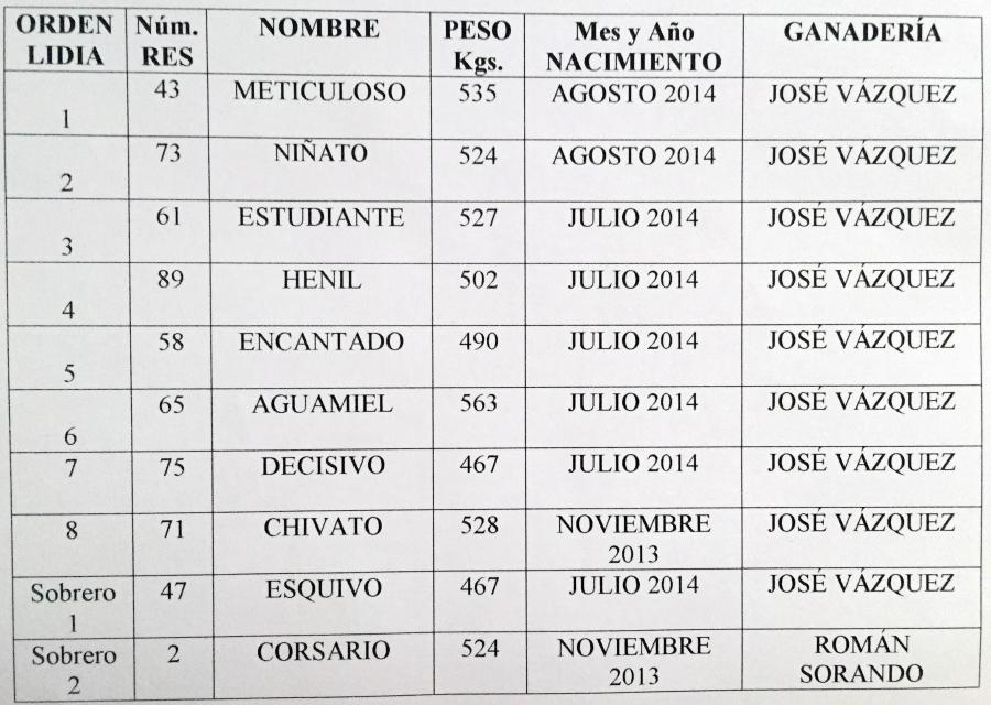 Ocho toros de José Vázquez para la Monstruo XXL