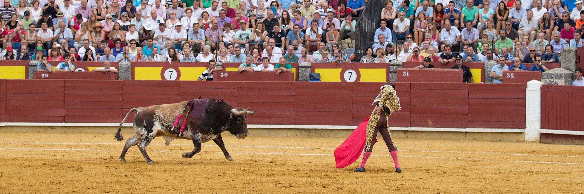 Maxitoro. Feria taurina de Ciudad Real