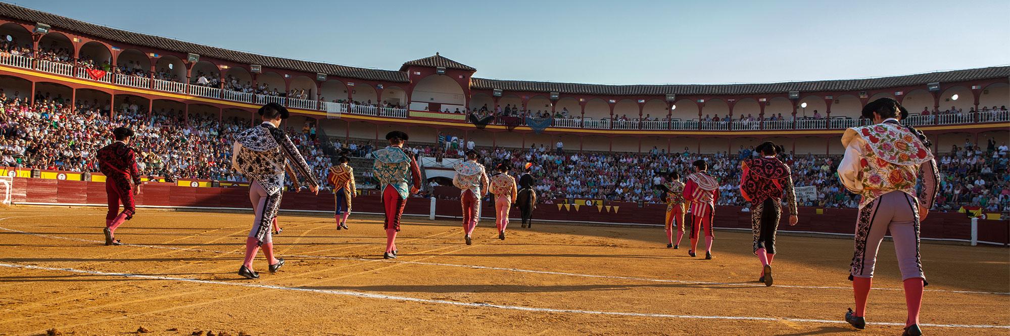 Maxitoro. Plaza de Toros de Ciudad Real