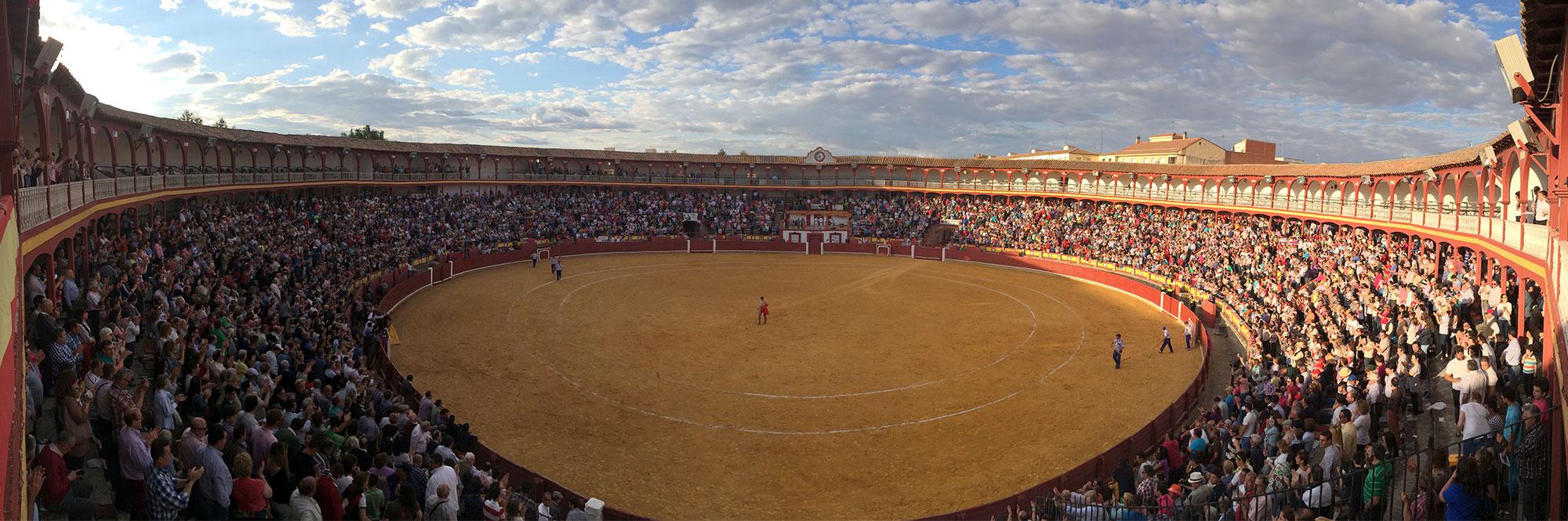 Maxitoro. Plaza de Toros de Ciudad Real panorámica